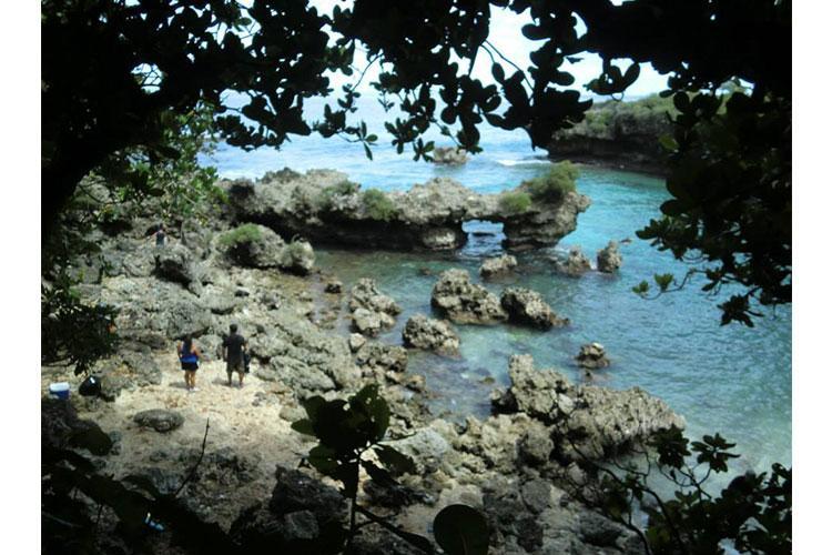 Ague Cove