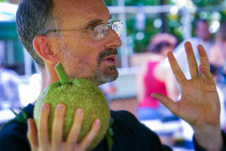 Craig Elevitch conducts a training on breadfruit. He and a team of educators will be conducting a workshop in Guam this November on designing and maintaining a productive and resilient food forest. Photo courtesy of Craig Elevitch