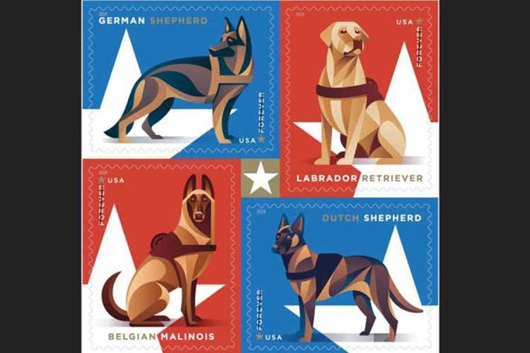 The U.S. Postal Service will issue 2019 stamps featuring military working dogs. (U.S. POSTAL SERVICE)