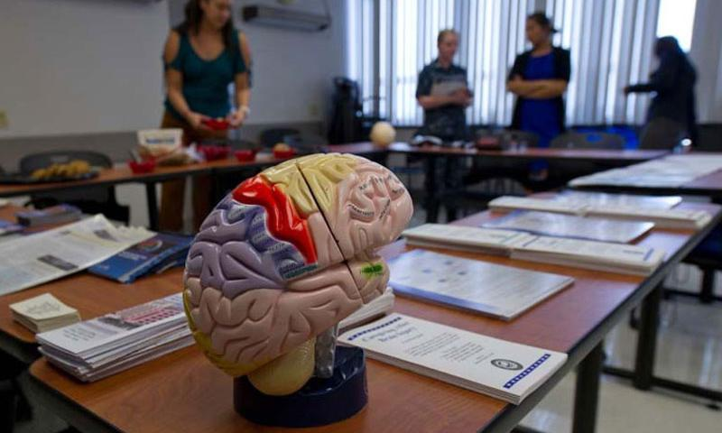 A Brain Injury Awareness Open House was held at Tripler Army Medical Center in Honolulu in March 2013 to educate beneficiaries on what brain injury services and support are available. (Michael R. Holzworth/U.S. Air Force)