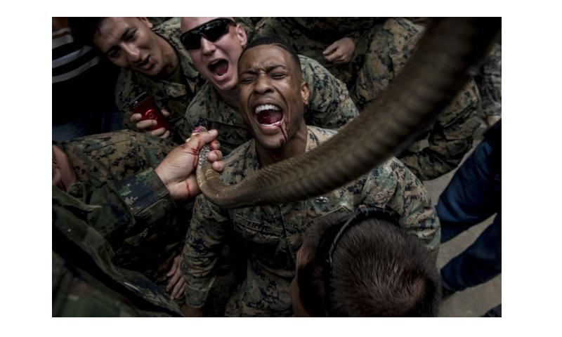 Marine Corps Sgt. Christopher Fiffie, who's assigned to the 3rd Reconnaissance Battalion, 3rd Marine Division, drinks cobra blood during jungle survival training in Sattahip, Thailand, Feb. 19, 2018. The training was conducted as part of Exercise Cobra Gold 2018. Snake blood can be consumed to keep an individual hydrated while the meat can be used as a source of nutrition. (Air Force photo by Staff Sgt. Micaiah Anthony)