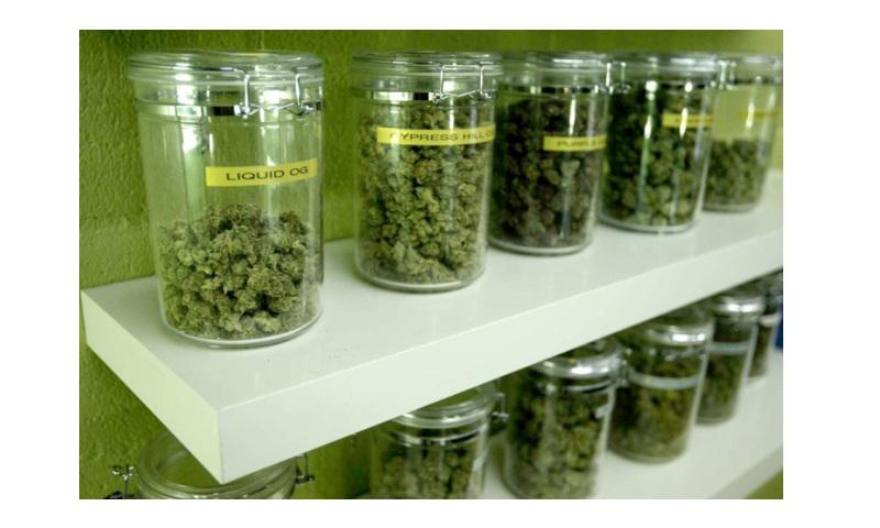 Medicinal marijuana buds are made available for patients at a medical marijuana dispensary in Long Beach, California. (GENARO MOLINA/LOS ANGELES TIMES/MCT)