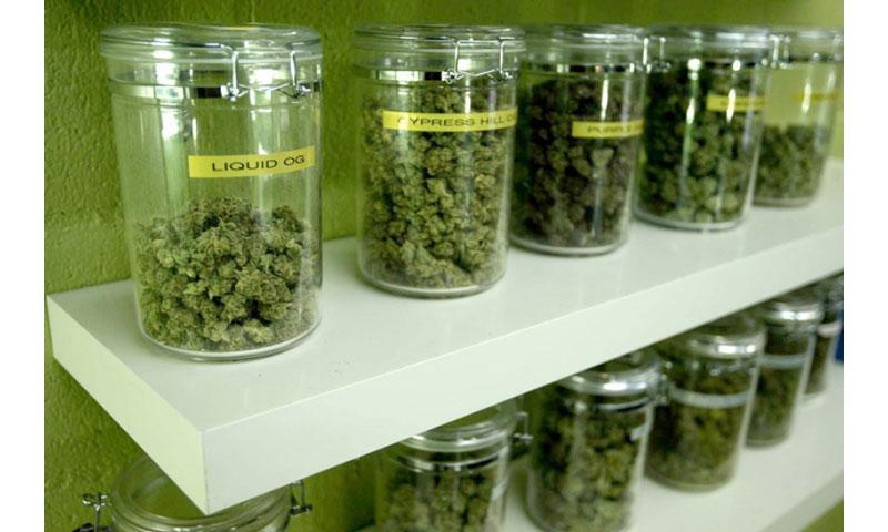 Medicinal marijuana buds are made available for patients at a medical marijuana dispensary in Long Beach, California. (GENARO MOLINA/LOS ANGELES TIMES/MCT)