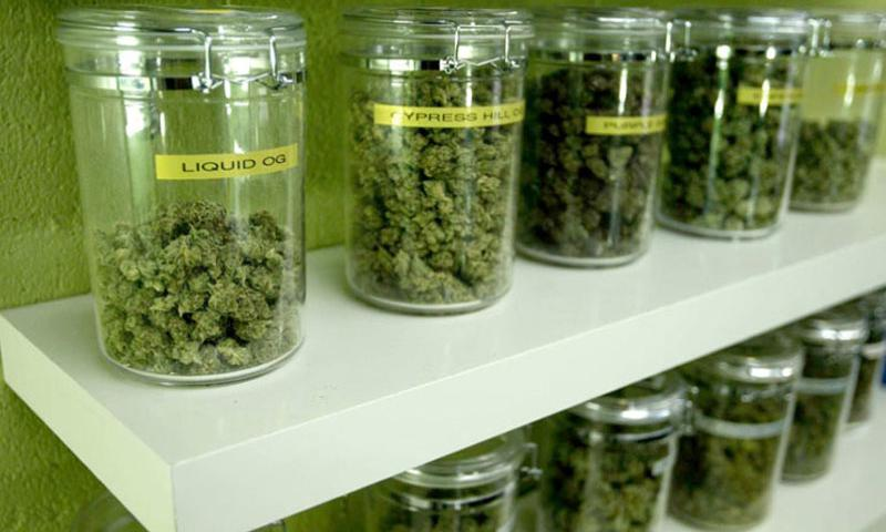 Medicinal marijuana buds are made available for patients at a medical marijuana dispensary in Long Beach, California on March 21, 2012. (Genaro Molina/Los Angeles Times/MCT)