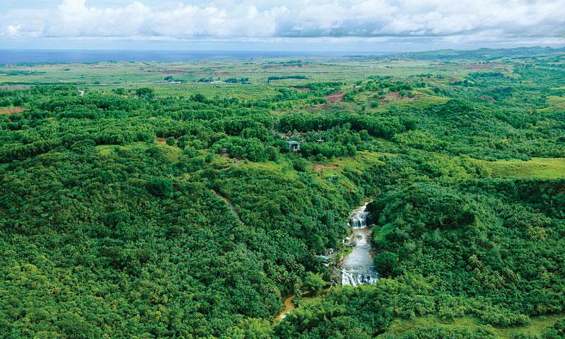 Tarofofo Falls