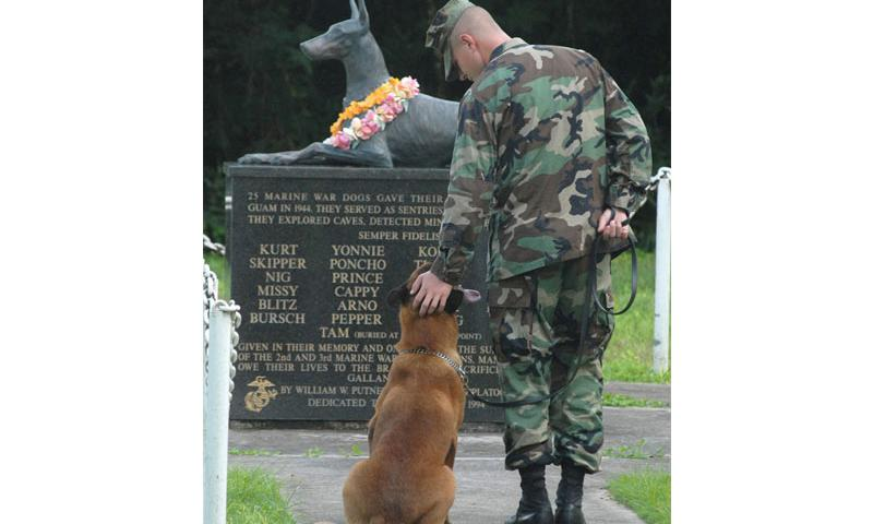 Petty Officer 2nd Class Blake Soller and his military working dog Rico pay tribute to the Guam War Dog Memorial on Naval Base Guam, Oct. 27, 2006. The memorial was dedicated in 1994 to 25 military dogs who died in the 1944 liberation of Guam. Photo by Petty Officer 2nd Class John F. Looney, courtesy of U.S. Navy