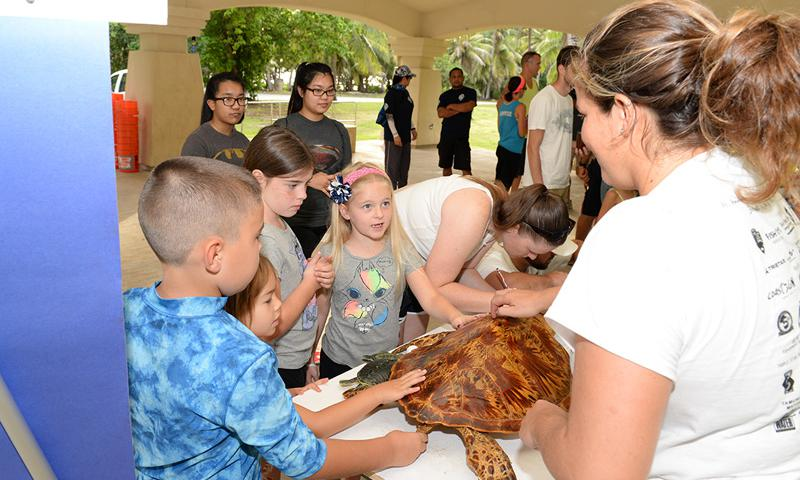 Marylou Staman, University of Guam Sea Turtle Monitoring, Protection and Educational Outreach on Guam project manager, discusses sea turtle shells with children Sept. 20, 2014 at Tarague Beach on Andersen Air Force Base, Guam. Volunteers from UOG partnered with the 36th Civil Engineer Squadron Environmental Flight to educate Andersen residents and clean base beaches during the International Coastal Cleanup. (U.S. Air Force photo by Tech. Sgt. Zachary Wilson)