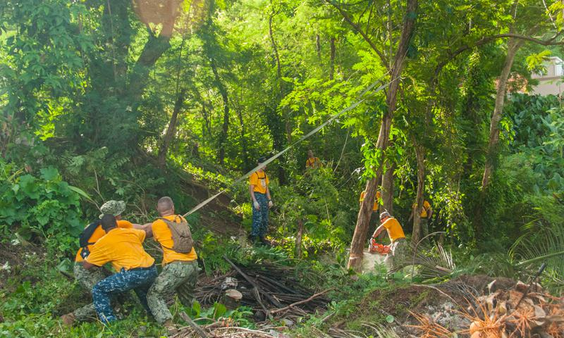 ASAN, Guam (Aug. 29, 2014) – Chief selects cut down a tree during a community relations event. Chief selects partnered with the Asan-Maina Mayor's Office to clear land that is causing flooding for surrounding residents in the village. (U.S. Navy photo by Leah Eclavea)