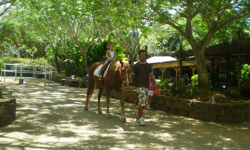 A young rider is guided along on horseback by one of the employees at Isla Horse Ranch in Tumon.