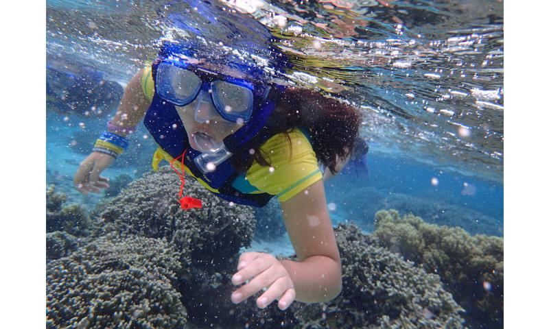A Preservation Ranger snorkeling at Asan Beach, War in the Pacific National Historical Park / NPS Photo